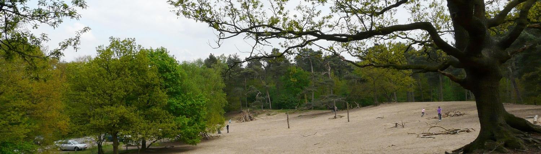 Seterse Bergen - Camping de Eekhoorn