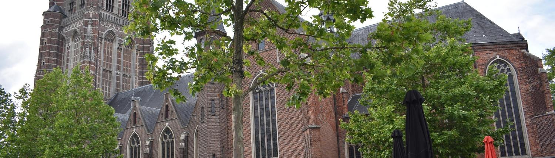 Proef Oosterhout - Camping de Eekhoorn